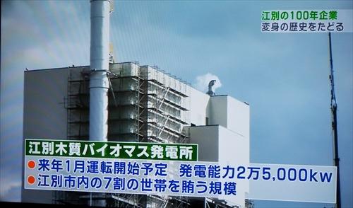江別木質バイオマス発電所