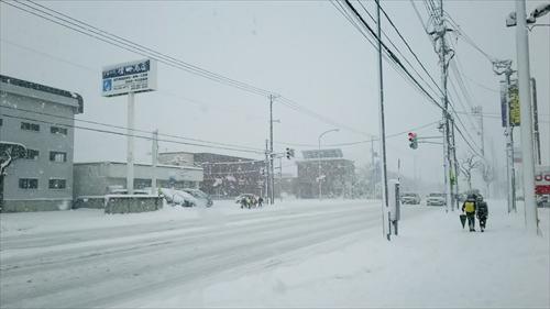 白樺通の積雪