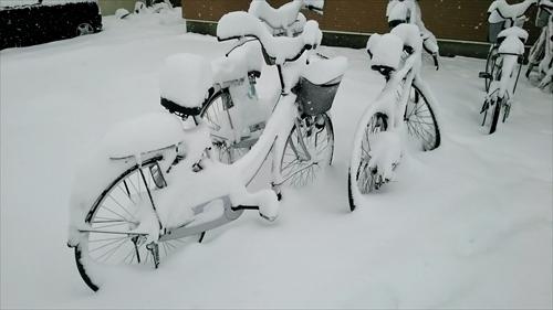 雪で埋まる自転車