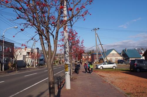 野幌街歩き