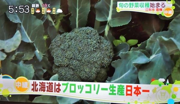 ブロッコリー生産量日本一・北海道江別市