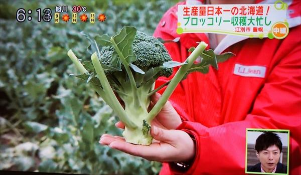 豊幌産ブロッコリー