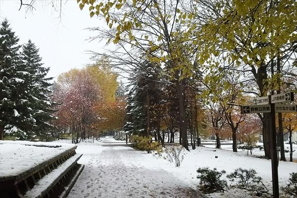 野幌グリーンモールの雪景色2016