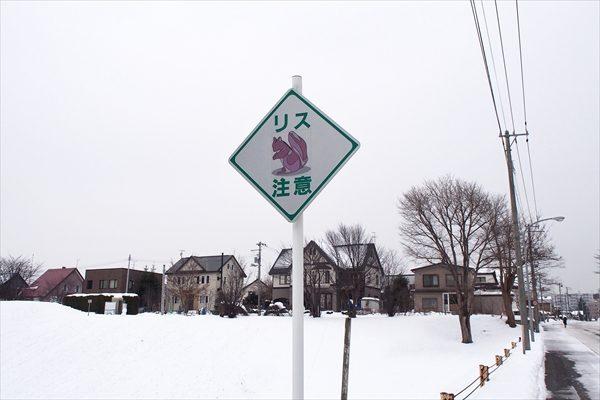 リス注意の道路標識