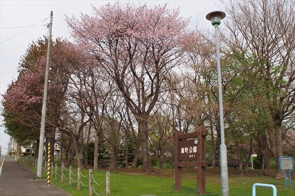江別・錦町公園・出入口