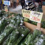 江別産野菜