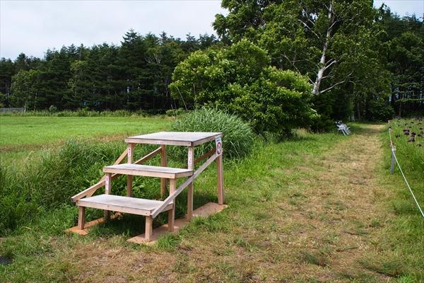 展望台とベンチ