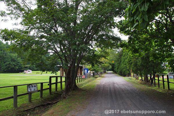 江別市森林公園キャンプ場・出入口道路