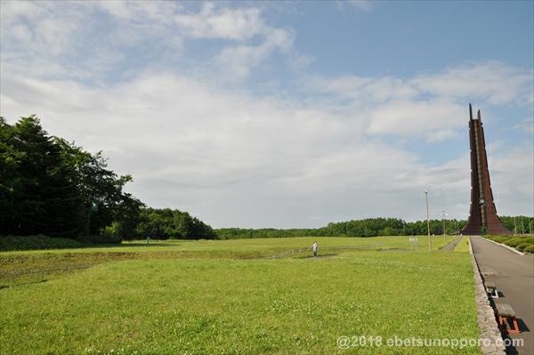 百年記念塔前の芝生