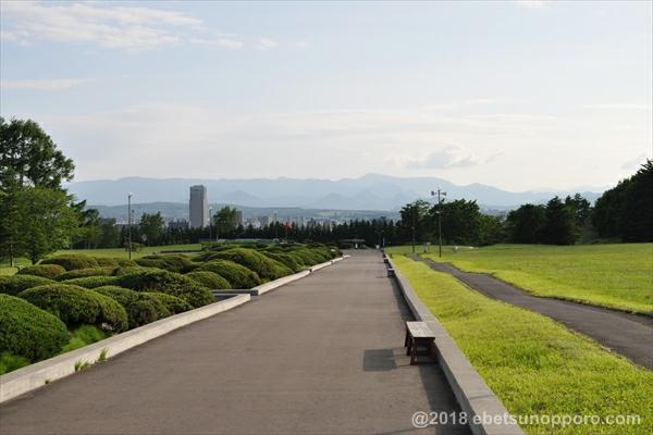 百年記念塔からの眺め