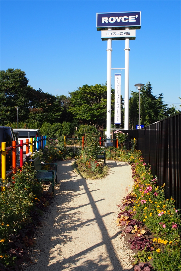 庭園とベンチ