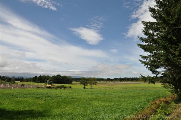 林木育種場からの眺め