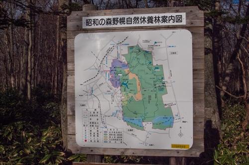野幌森林公園 地図