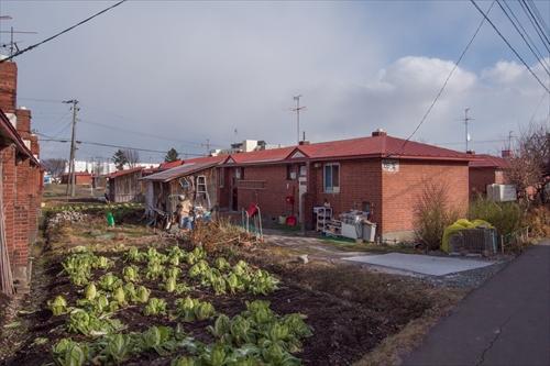 新栄団地・煉瓦住宅