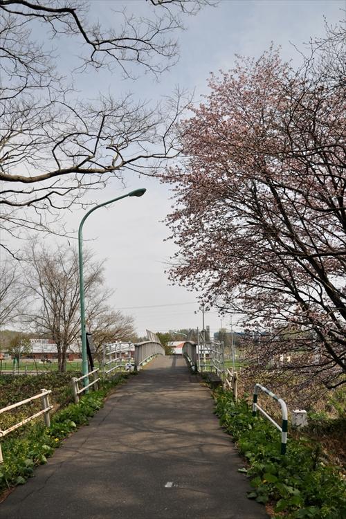 大麻駅東、跨線人道橋