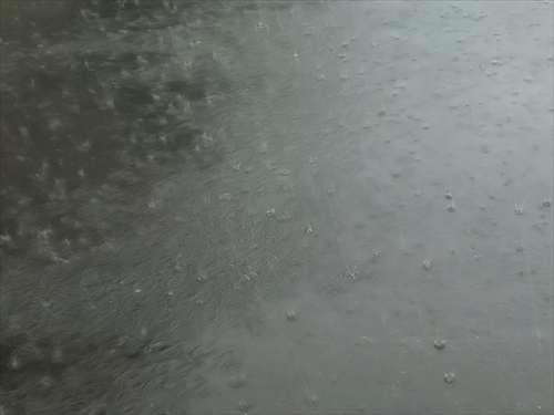 大雨洪水警報