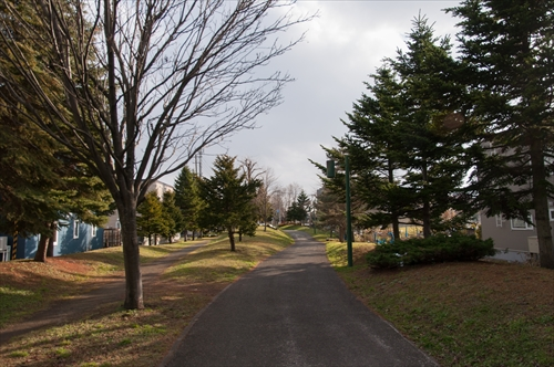 冬のゾーン散歩道