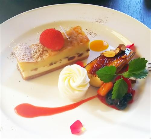 モルフォ店内チーズケーキ