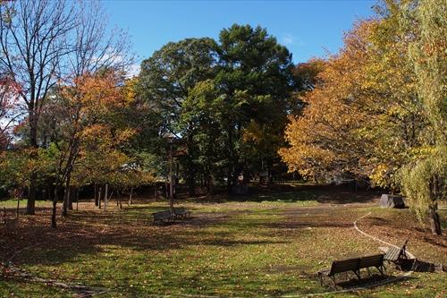 錦山緑地の紅葉