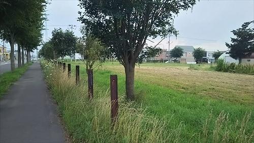 古レールの柵