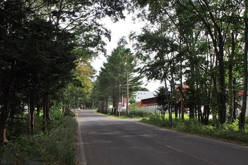 酪農学園大学内の道路