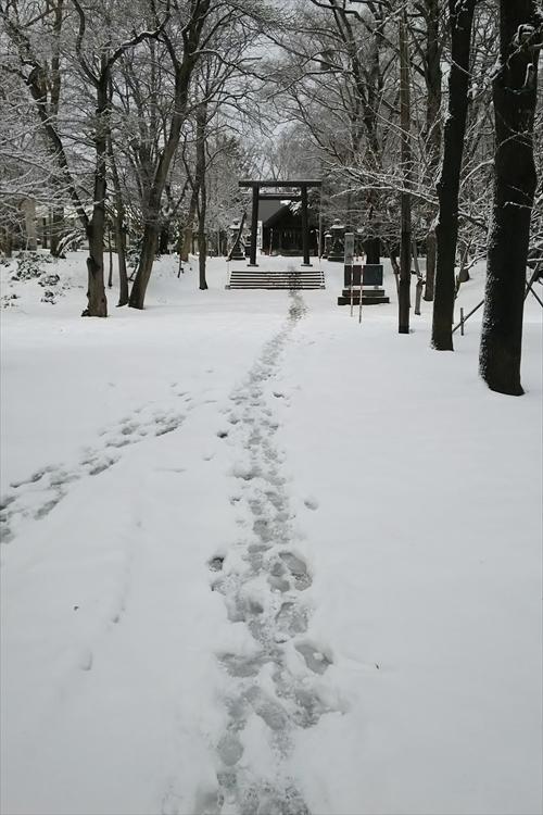 錦山天満宮鳥居の道