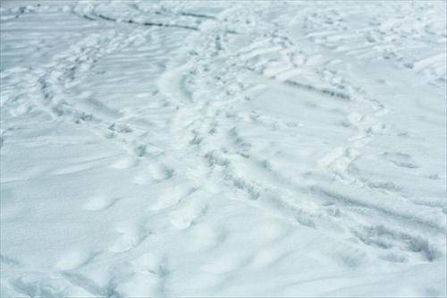 雪・スキー