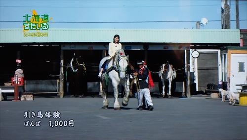 ばんば引き馬体験