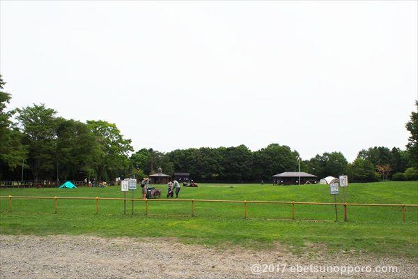 江別市森林キャンプ場・芝生