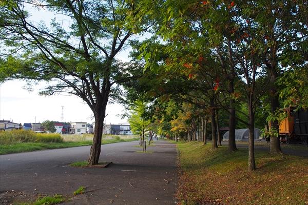 四季のみち秋のゾーン駐車場跡地