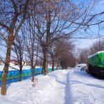 四季の道・保存車両