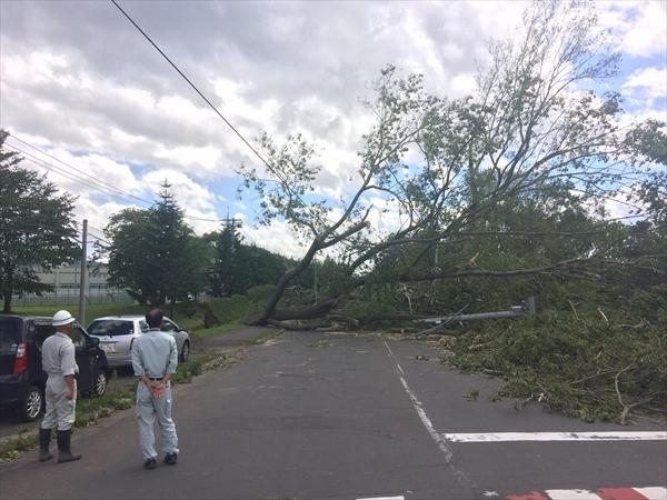 台風21合による被害・通行止め