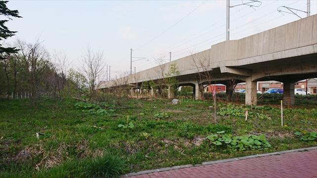 都市緑地保全施設整備工事区域
