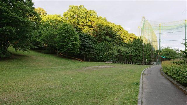 芝生広場とテニスコート
