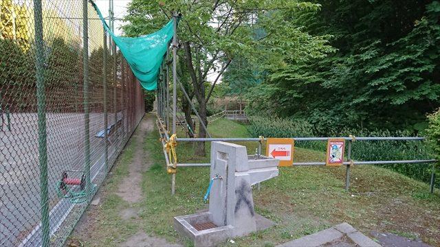 テニス場裏手の道