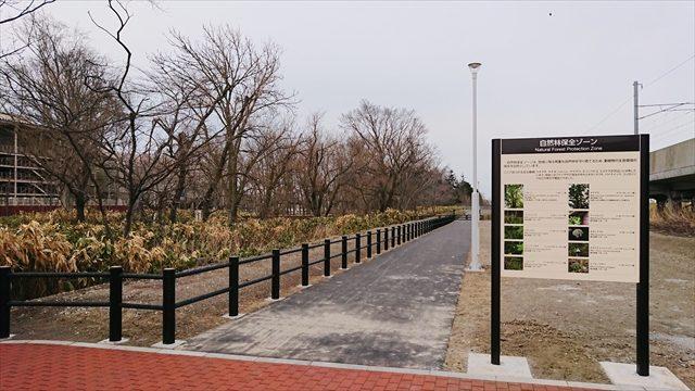自然林保全ゾーン