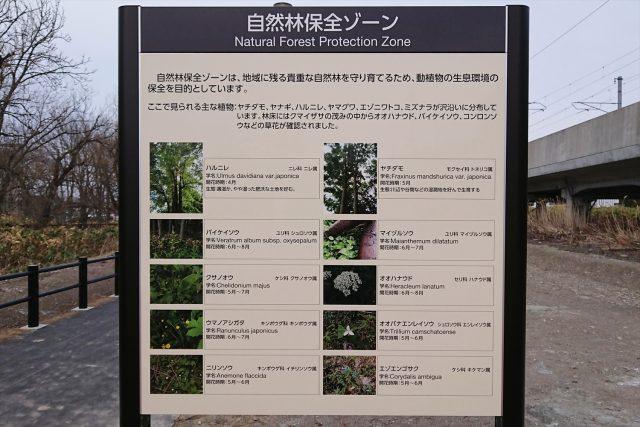 自然林保全ゾーン案内図