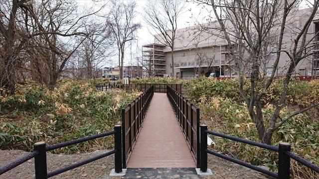 自然林保全ゾーン内・橋