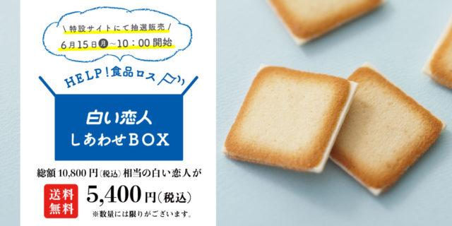 白い恋人半額ボックス