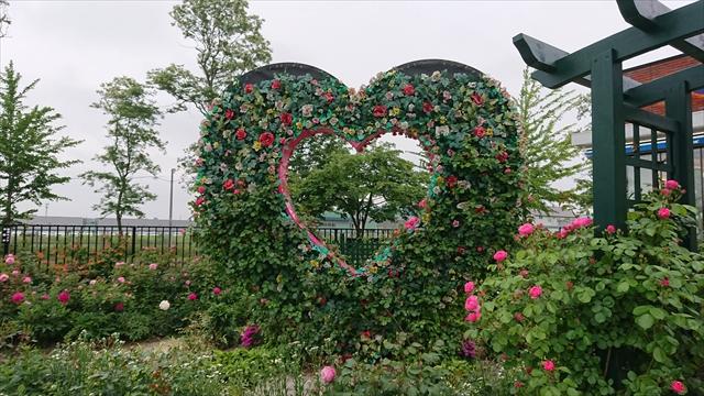 ハート型花壇