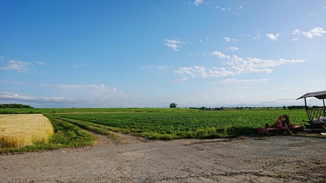 江別の農地