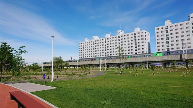 芝生と高架と特急列車
