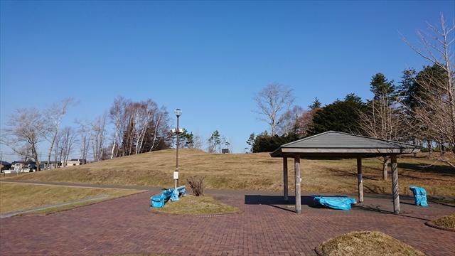 飛烏山公園(飛鳥山)