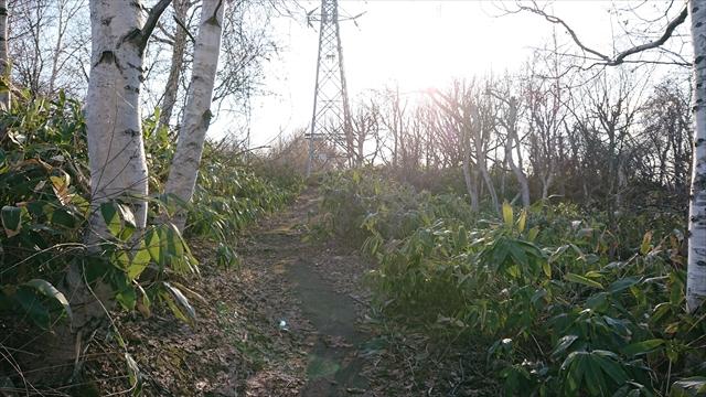 江別古墳群への通路