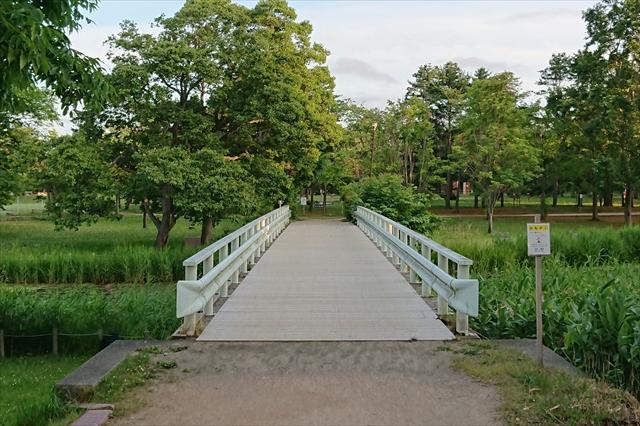 泉の沼公園内ガーダー橋(北)