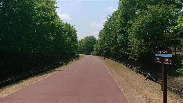 四季の道夏ゾーン・アスファルトの道