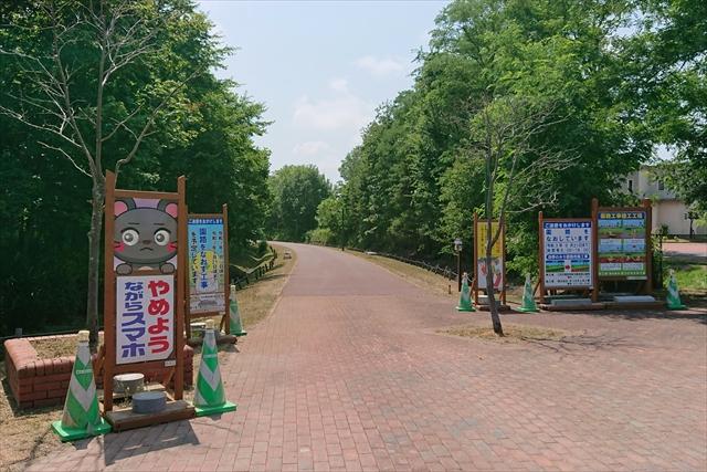 四季の道夏ゾーン・アスファルトの道江別蔦屋書店側