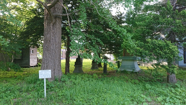 泉の沼公園側出入口と江別市保存樹木